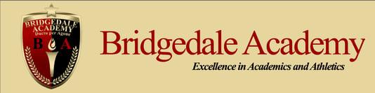 Bridgedale Academy Prep School for Youth Hockey Players